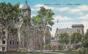PEORIA, Illinois, PU-1951; Bradley University