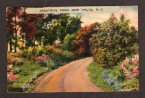 NY Greetings from NEW PALTZ NEW YORK Postcard PC
