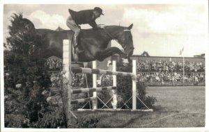 Horse Sports Equestrian sport Horses RPPC 03.23