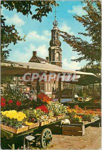 Postcard Modern Amsterdam Holland's march to the Singel flower under the old ...