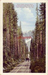 SNOW PEAK AVENUE ROAD TO EMERALD LAKE. FIELD B.C. CANADA Horse-drawn wagon
