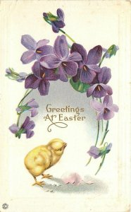 Easter~Chick Hatches~Shell~Arching Purple Flowers~Emb~Stecher Litho~Ser 303A
