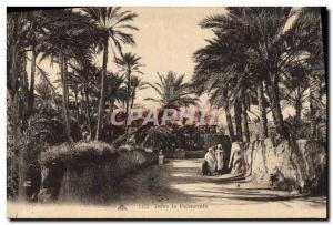 Old Postcard in the Palmeraie