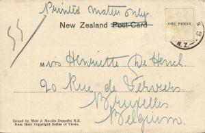 new zealand, Native Maori House Interior (1900)