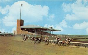 E4/ Atlantic City New Jersey NJ Postcard Chrome Horse Race Track Grandstand 1