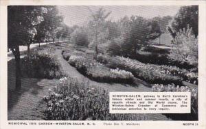 North Carolina Winston Salem Municipal Iris Garden