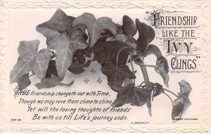 Friendship Like the Ivy Clings, leaf leaves, souvenir