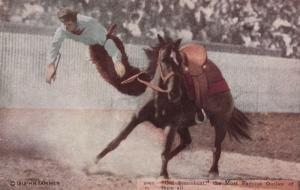 Rodeo ; Old Steamboat (Horse) , The Most Famous Outlaw of them all , 1910s