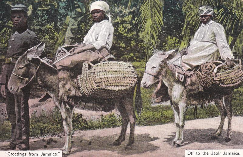 JAMAICA, 1900-1910´s; Greetings From Jamaica, Off To The Jaol, Boys On Donkeys