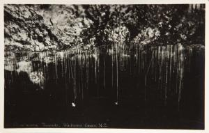 Glow-worm Threads Waitoma Caves New Zealand NZ Unused Real Photo Postcard D32