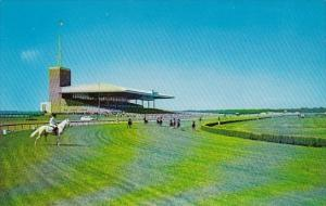 New Jersey Atlantic City Race Course Racing On The Turf