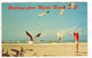 Greeting from Myrtle Beach, South Carolina,40-60s