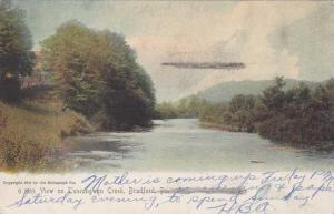 Tuneangwon Creek - Bradford PA, Pennsylvania - pm 1910 - UDB