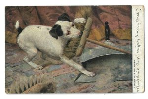 Antique Postcard Dog A Brush With The Enemy 1904 Raphael Tuck & Sons Stamp
