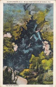 Florida Silver Springs The Blue Grotto Curteich