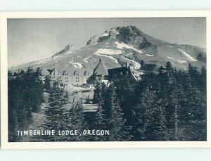 Unused 1940's LODGE SCENE Timberline Lodge Oregon OR J7416