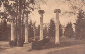 Washington Seattle Historic Columns University Of Washington Albertype