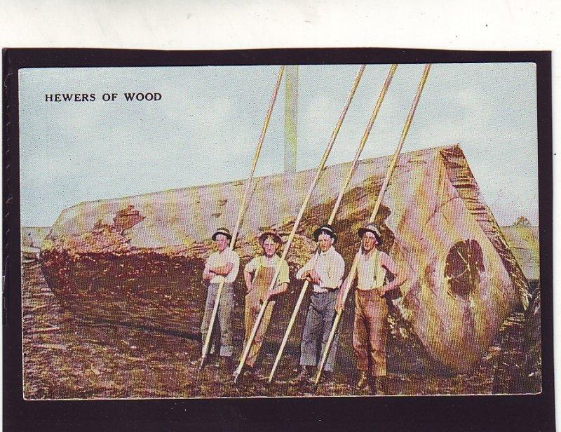 P1628 old unused postcard logging the hewers of wood very large log