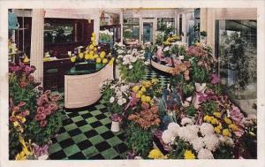 Edgewater Beach Hotel Flower Shop Chicago Illinois