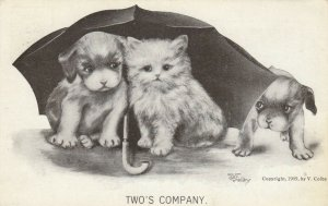 Puppy dog & kittie cat under an umbrella, puppy peering from side, 1909