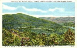 Mt. Walker Lookout