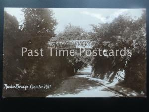 Somerset CLEVDON Coombe Hill Rustic Bridge c1911 RP by Harvey Barton