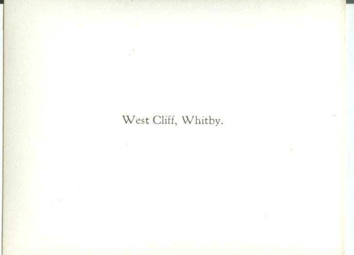 UK, West Cliff, Whitby, Photo Snap-Shot