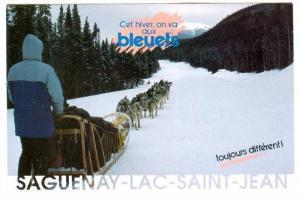 Cet hiver, on va aux bleuets, dog team, Saguenay-Lac-Saint-Jean, Quebec, Cana...