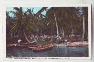 P686 JLs old card panama loading coconuts on boats chagres river