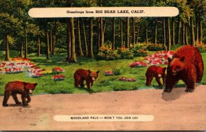 California Greetings From Big Bear Lake With Brown Bear Family 1944