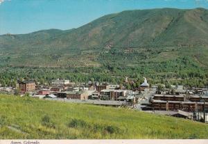 Colorado Aspen Panoramic View