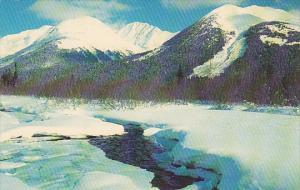 Alaska The 49th State Mountain Scene