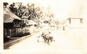 RPPC Caribou & Cart, Guam, M.I. Mariana Islands c1910s Vintage Photo Postcard