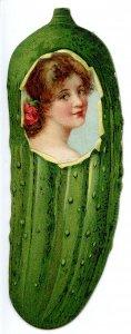 Advertising Trade Card - Heinz Pickle, Pretty, Smiling Girl    (5H X 2W Die...