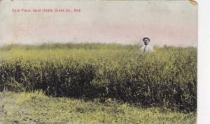 Oats Field,near Owen,Clark Co., Wisconsin,PU-00-10s
