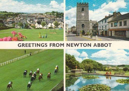 Newton Abbot Race Course Horse Racing Photo Postcard