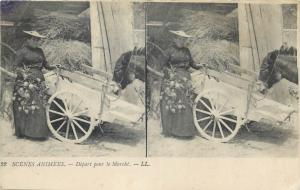 Stereographic view life scene old stereo postcard donkey cart market seller
