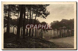 Old Postcard Arcachon The big dunes of the city & # 39hiver