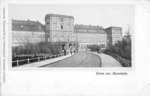 Mannheim Germany Grossherzogl Schloss Scenic View Antique Postcard J77030
