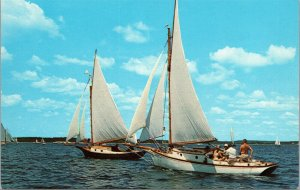 Postcard ME Maine Coast Sloops Sailboat Racing Frenchmans Bay Unposted