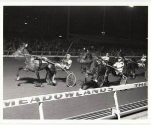 MEADOWLANDS, Harness Horse Racing, FACE TO FACE winner, 1989