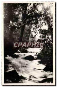 Old Postcard Divonne les Bains Divonne undergrowth