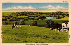 Mississippi Greetings From Amory With Cattle Grazing 1952 Curteich