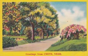 Nebraska Greetings From Crete 1953
