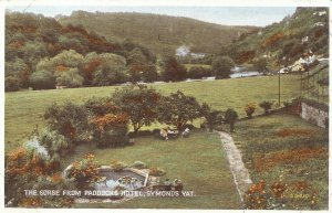 Herefordshire Postcard - The Gorge from Paddocks Hotel - Symonds Yat   DP401