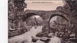 Shooting the Rapids , Killarney , Ireland , 00-10s