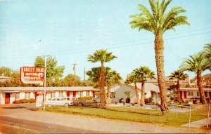 Arizona Tempe Breezy Palms Motor Hotel 1960
