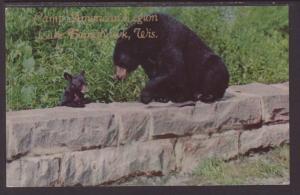 Black Bears,Camp American Legion.Lake Tomahawk.WI Postcard