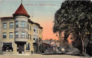 C18/ Roselle Park New Jersey NJ Postcard 1916 Chestnut Street Horning Drug Store