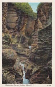 New York Watkins Glen Minnehaha Gorge Curteich